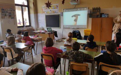 """Continuità B.Tecchi e scuole """"E.De Amicis"""", """"A.Grandori"""""""